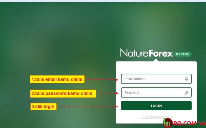 Đánh giá sàn NatureForex dựa trên các tiêu chí quan trọng