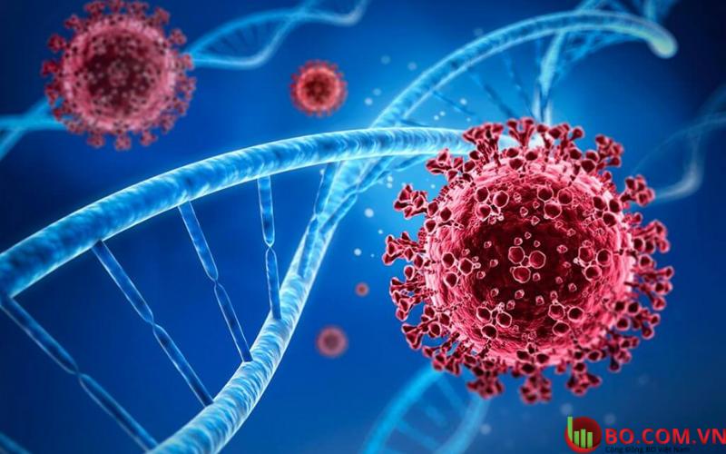 Biến thể Covid mới phát hiện ở Nam Phi có thể phá hàng rào bảo vệ của vắc xin Pfizer