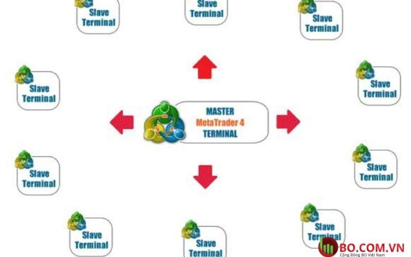 Copy trade MT4