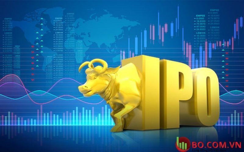 Robin Hood Markets đã tạo tiền đề cho đợt IPO