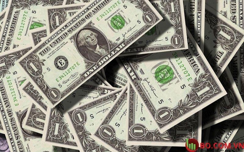 Sơ lược vài nét đồng đô la hôm nay