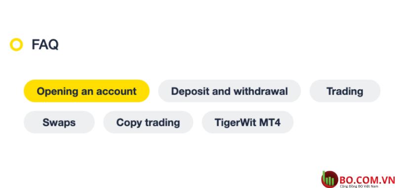Các vấn đề khác về TigerWit